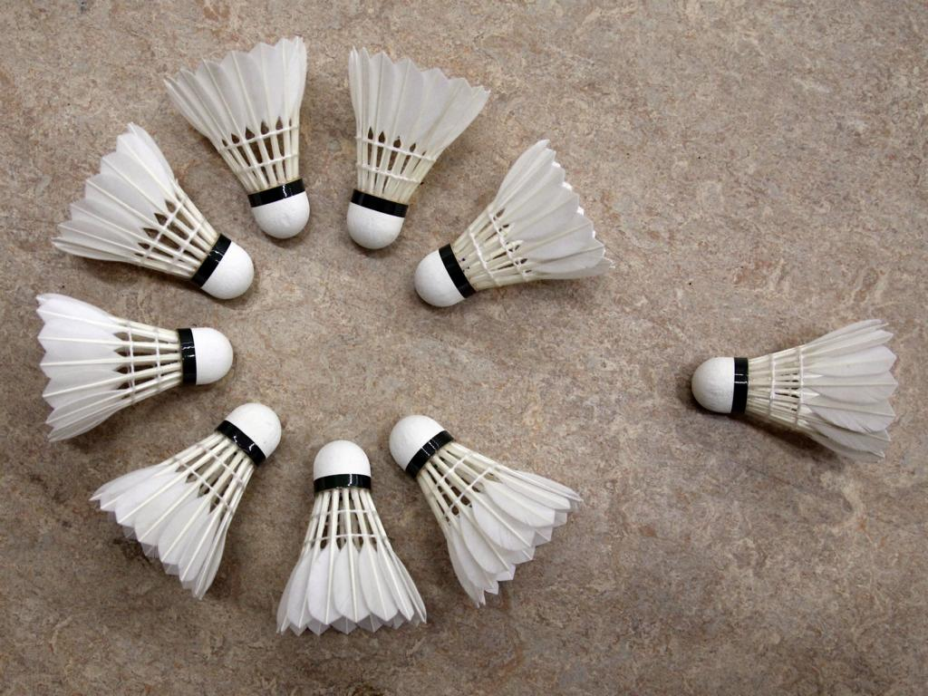 Badminton Federball Verein